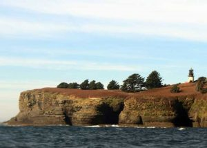 cape flattery day trip