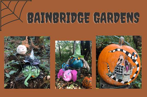 bainbridge-gardens-fall-pumpkins